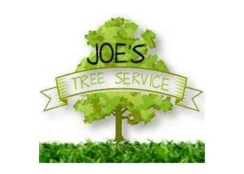 Springfield tree service Joe's Tree Service