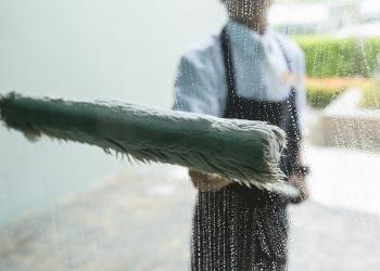 Baton Rouge window cleaner John's Pro Window Cleaning