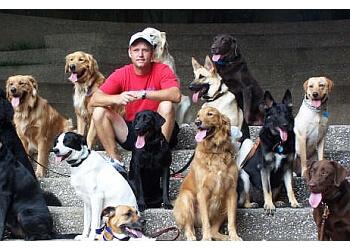 Arlington dog training K-9 Direction