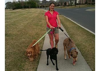 Baton Rouge dog walker K9 Krewe Pet Care