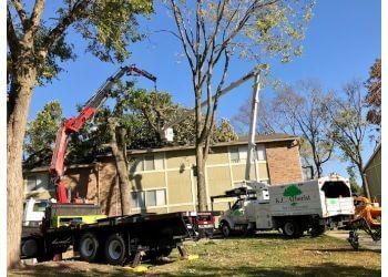 Olathe tree service K.C. Arborist, Inc.