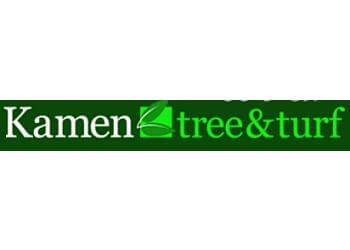Stamford tree service Kamen Tree & Turf