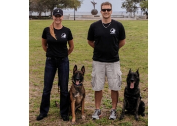 Jacksonville dog training Karma K9, LLC