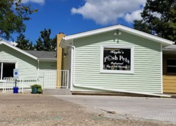 Cincinnati pet grooming Kayla's Posh Pets Grooming & Boutique
