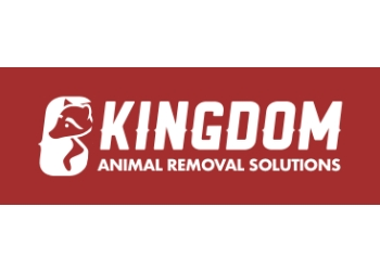 Charlotte animal removal Kingdom Animal Removal