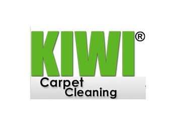 kiwi carpet cleaning phoenix arizona vidalondon