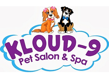 Knoxville pet grooming Kloud-9 Pet Salon and Spa