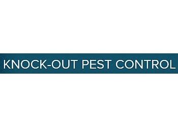 Detroit pest control company Knock-Out Pest Control