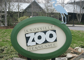 Knoxville places to see Knoxville Zoo