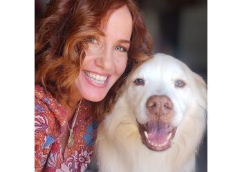 Riverside dog walker Kristy's TLC Animal Care
