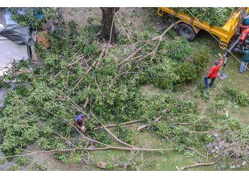 Akron tree service Kustom Trim Tree Service LLC