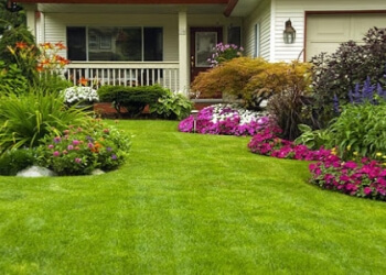 Los Angeles lawn care service L.A. Green Landscaping and Maintenance