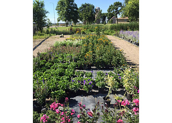 Sioux Falls landscaping company Landscape Garden Centers