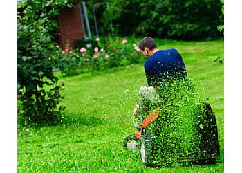 Henderson lawn care service Landscaping & Lawn Maintenance