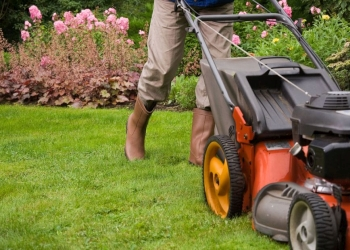 Chula Vista lawn care service Landscaping Pros