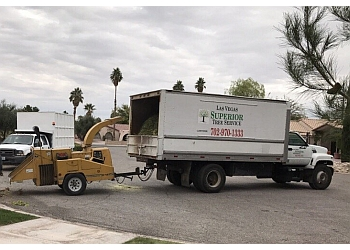 North Las Vegas tree service Las Vegas Superior Tree Service