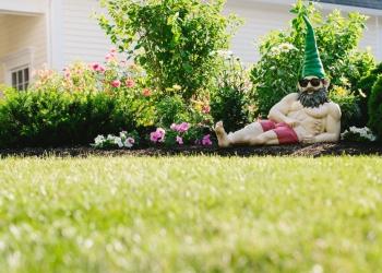 Orlando lawn care service Lawn Doctor Orlando