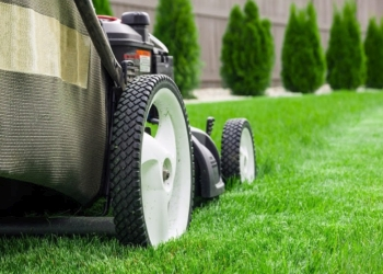 Raleigh lawn care service LawnStarter