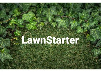 San Antonio lawn care service LawnStarter Lawn Care Service