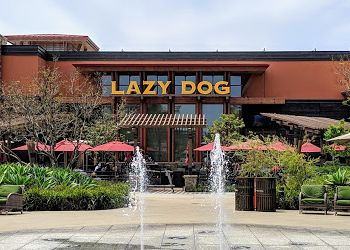 Oxnard american restaurant Lazy Dog Restaurant & Bar
