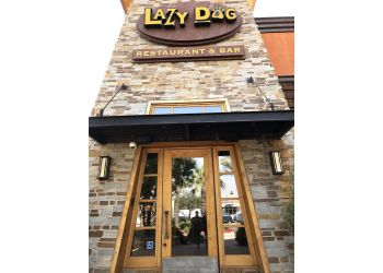 Lazy Dog Restaurant Bar