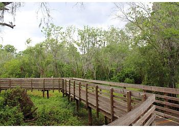 Tampa hiking trail Lettuce Lake Park Trail
