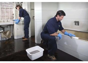 Lexington house cleaning service Lexington Service Solutions, Inc.