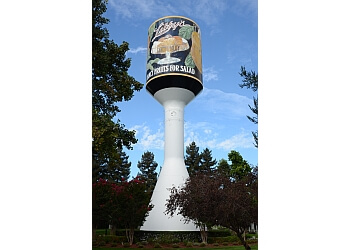 Sunnyvale landmark Libby's Water Tower