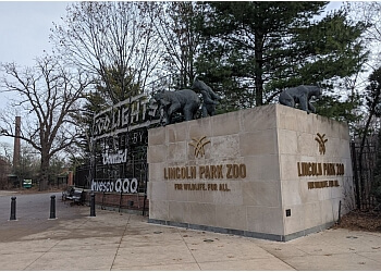 Chicago places to see Lincoln Park Zoo