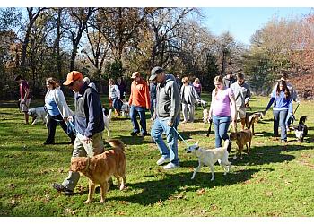 Arlington dog training Lisa's K-9 Kids