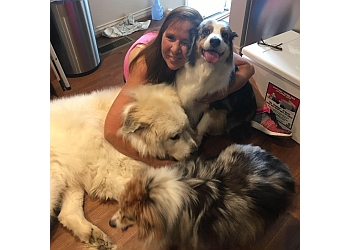 Louisville dog walker Lisa's Pet Sitting Service
