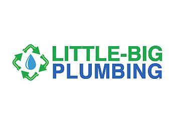 Honolulu plumber Little Big Plumbing, LLC