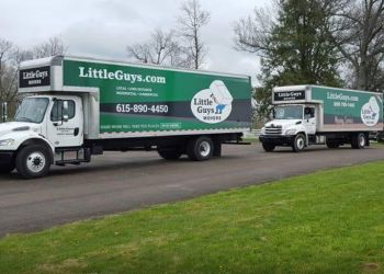 Lexington moving company Little Guys Movers
