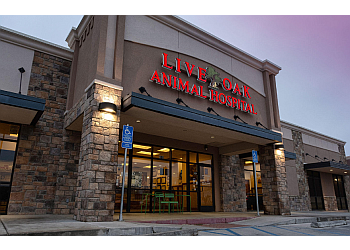3 Best Veterinary Clinics In Lubbock Tx Expert Recommendations