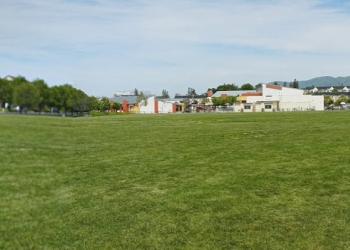 Santa Clara public park Live Oak Park