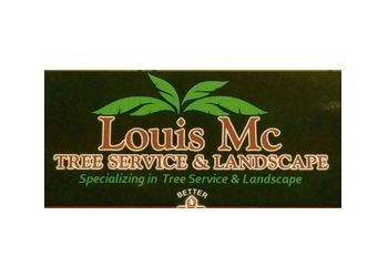 Santa Ana tree service Louis Mc Tree Care and Landscaping