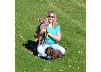 Glendale dog walker Love Your Pets Too Pet Sitting