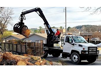 Little Rock tree service Luis's Tree Service