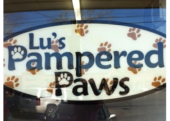 Tulsa pet grooming Lu's Pampered Paws