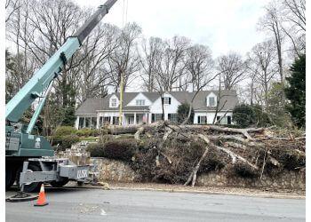 Winston Salem tree service Lusk Tree Service Inc.