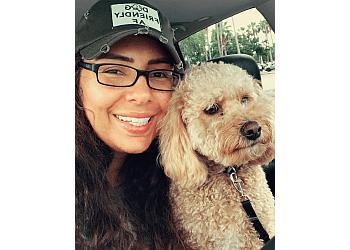 Tampa dog walker Luxury Walks
