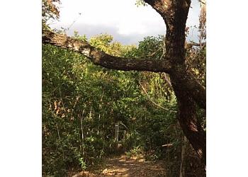 Palm Bay hiking trail MARITIME HAMMOCK SANCTUARY