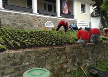 Yonkers lawn care service M.Carbillano, Inc.
