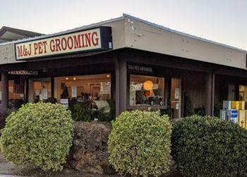 Sunnyvale pet grooming M & J Pet Grooming