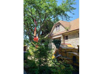 Milwaukee tree service M&M Tree Care