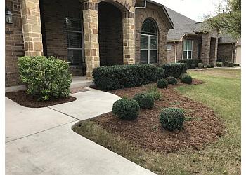 San Antonio lawn care service Macario Brother's Lawn Care
