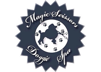 Bridgeport pet grooming Magic scissors doggie spa