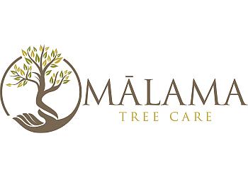 Honolulu tree service Malama Tree Care