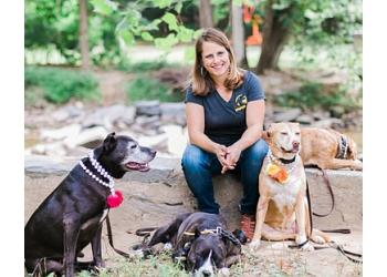 Washington dog training Mango Dogs DC