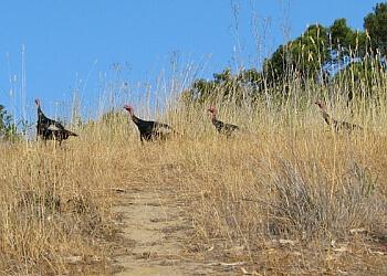 Vallejo hiking trail Mare Island Shoreline Heritage Preserve